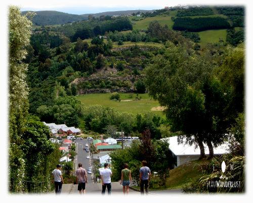 Ein Hügel in Dunedin