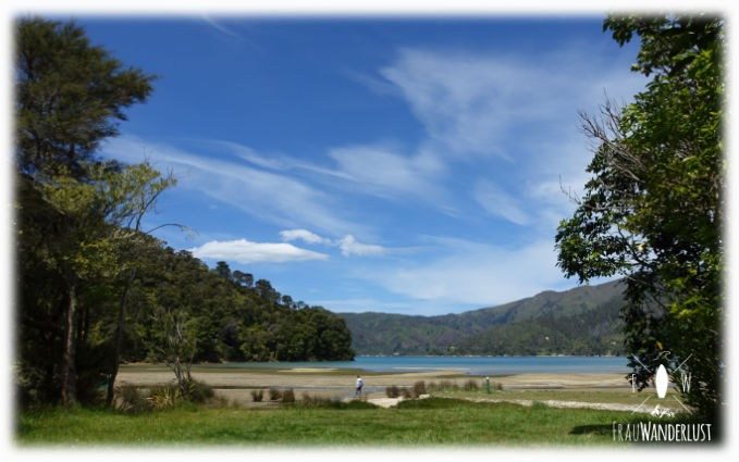Queen Charlotte Track in Picton