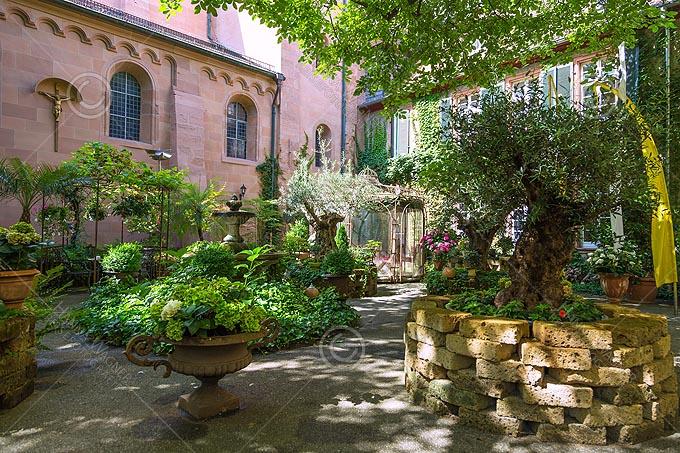Worms, St. Martin, Garten im Innenhof