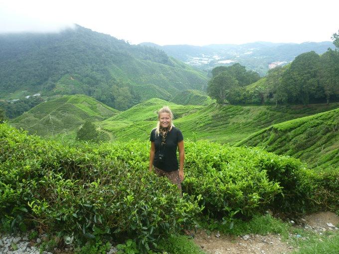 Reisen, Stefanie in Teeplantagen