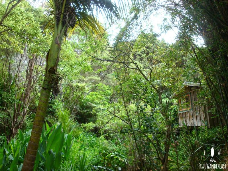 Unterkunft auf Reisen: Hostel im Baumhaus