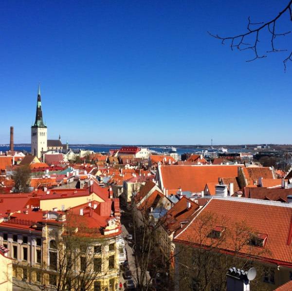 Haupstadttour Blick über Tallinn