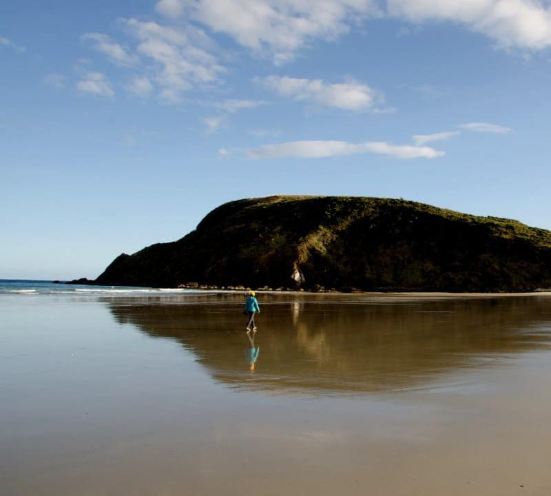 Beitragsbild: Insider-Tipps für Neuseeland